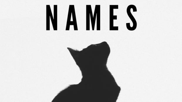 what-are-good-black-cat-names