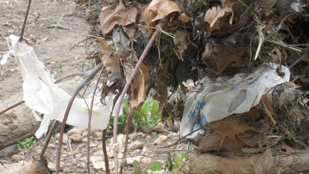 plastic-ban-in-the-philippines-one-city-at-a-time