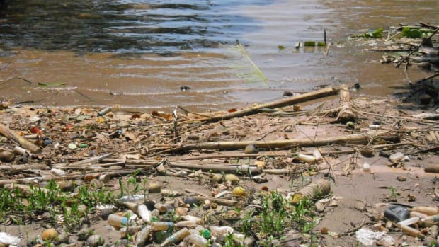 potential-solutions-to-water-pollution