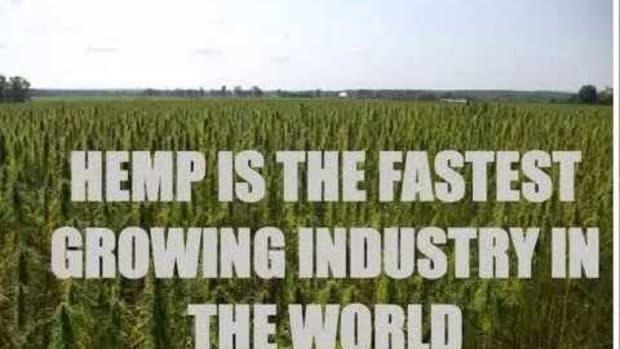 hemp-farming