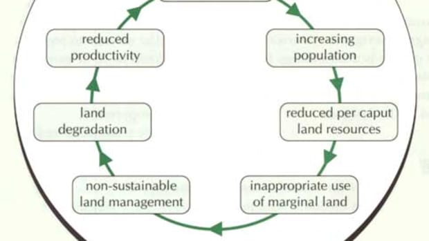 issue-of-land-degradation