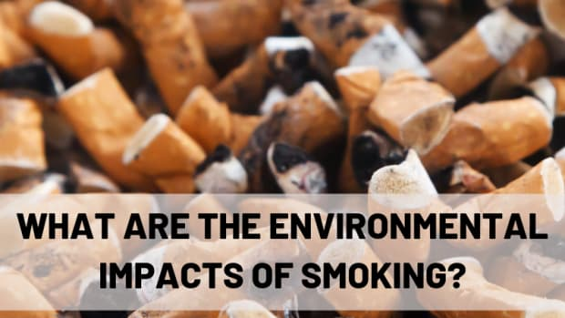 smoking-beyond-you-the-environmental-impact-of-cigarettes