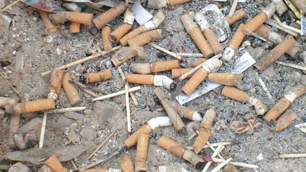 the-toxic-trash-of-cigarette-butts
