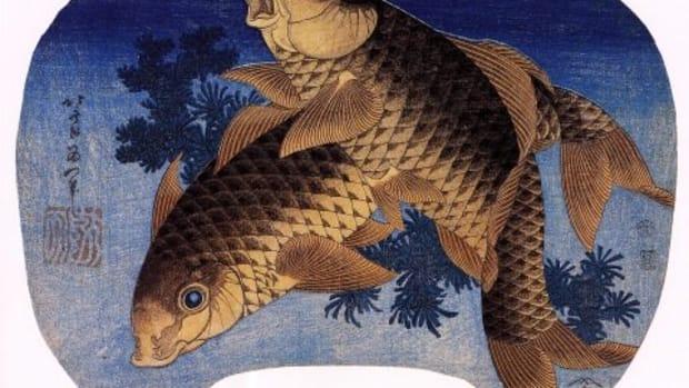 koi-fish-art