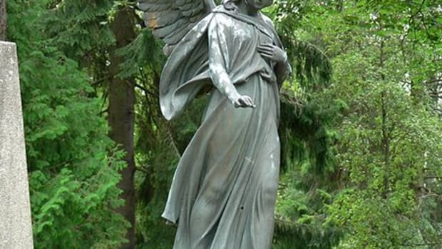 the-library-angel