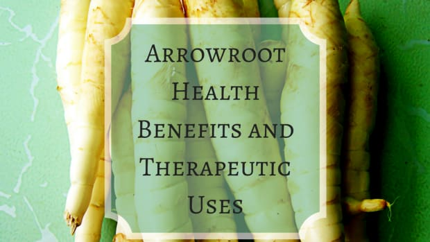 what-is-arrowroot-what-are-the-health-benefits-why-it-is-used-for-gluten-free-baking