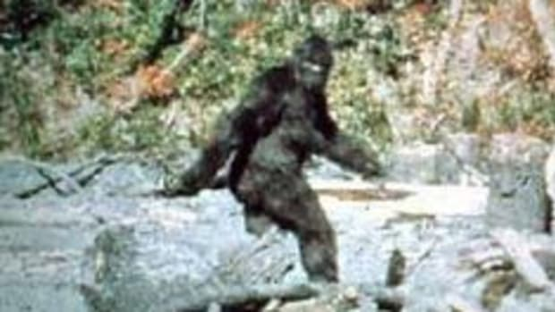 was-bigfoot-put-on-earth-by-ancient-aliens
