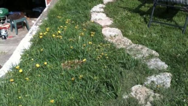 how-to-kill-grass-without-using-chemicals