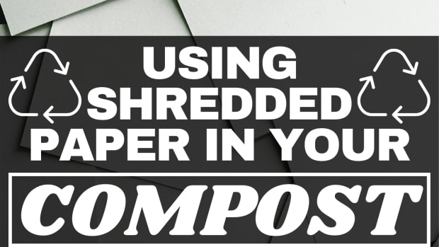 can-you-compost-shredded-paper