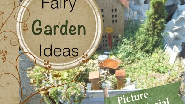 miniature-fairy-gardens-ideas-and-pictures