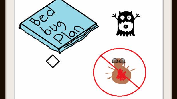 bed-bug-extermination-checklist