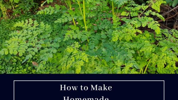 how-to-make-malunggay-tea-home-made-moringa-tea
