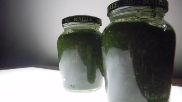 fresh-english-mint-sauce-marcus-waring