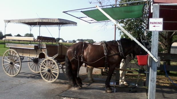 visiting-amish-country-lancaster-county-pennsylvania