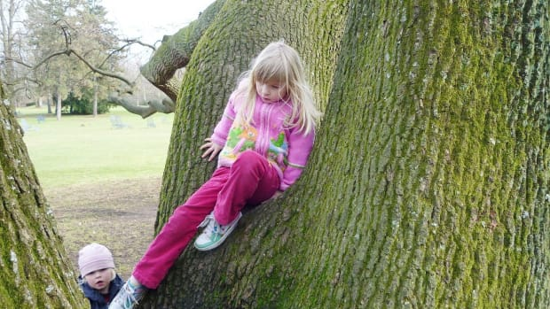 natural-playgrounds-for-kids-advantages-and-problems