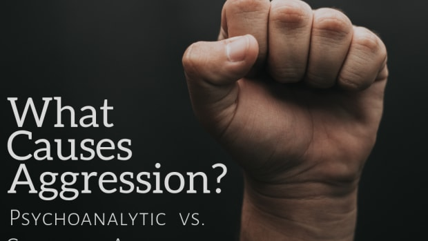 causes-of-aggression-what-causes-aggression-a-psychological-perspective