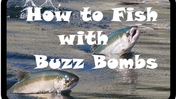 how-to-catch-fish-with-buzz-bombs
