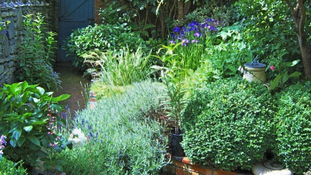 create-a-beautiful-garden-in-a-small-space