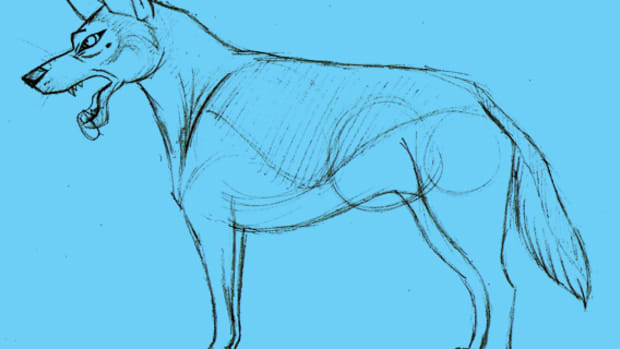 how-to-draw-a-cartoon-dog-semi-realistic