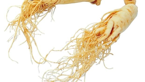 the-benefits-and-dangers-of-ginseng