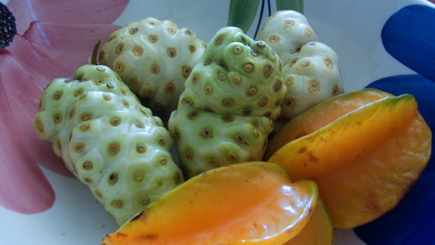 how-to-juice-noni