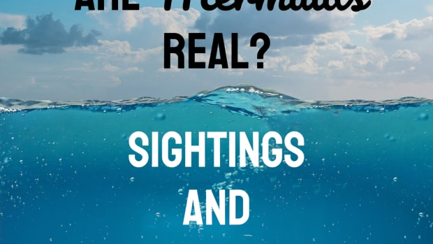 mermaid-sightings-and-stories