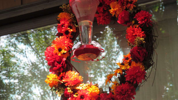 how-to-make-a-hummingbird-feeder-wreath