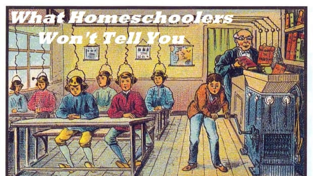 seven-things-homeschoolers-wont-tell-you