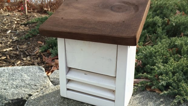how-to-build-a-ladybug-house