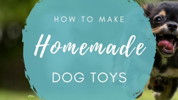 homemadedogtoys