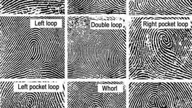 fingerprint_science_project_for_kids