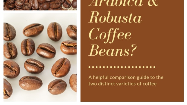 what-is-the-difference-between-arabica-and-robusta-coffee-beans