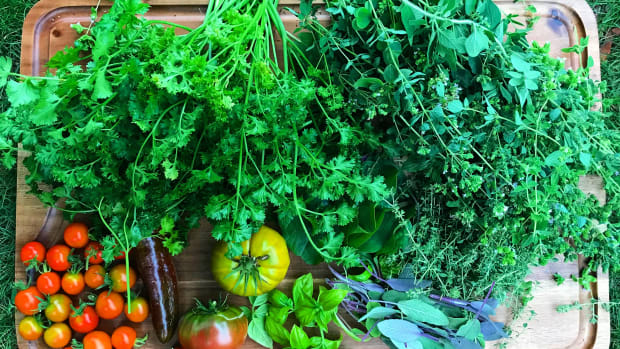 how-to-dry-herbs-from-the-garden
