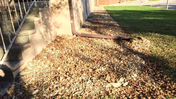 protect-building-foundations-by-rainscaping