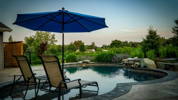great-plant-choices-for-your-poolside-landscape