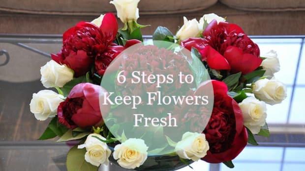 6-steps-to-keep-flowers-fresh-longer