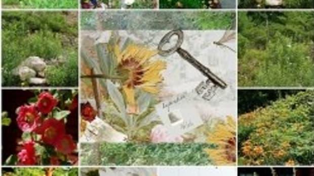 teaching-critical-literacy-with-the-secret-garden