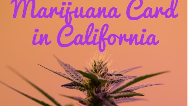 how-to-apply-for-medical-marijuana-card