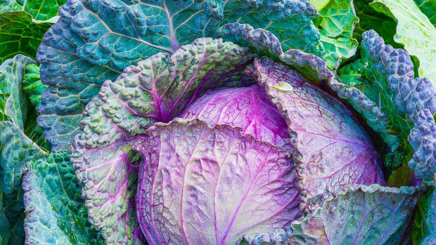 cruciferous-vegetables-indole-3-carbinol-and-colon-cancer-risk