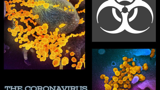 the-coronavirus-symptoms-treatment-and-prognosis