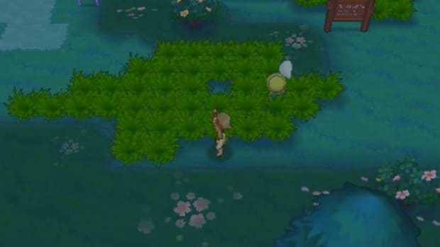 pokemon-omega-ruby-and-alpha-sapphire-walkthrough-part-five-route-116