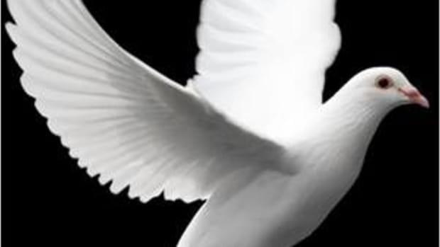 a-doctrinal-statement-on-the-holy-spirit-pneumatolgy