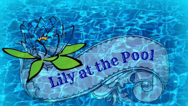 people-almost-met-lily-at-the-pool