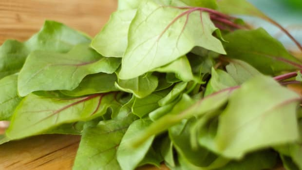 the-health-benefits-of-spinach-for-endurance-athletes