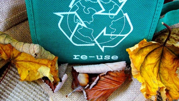 10-reasons-why-you-should-recycle-your-waste