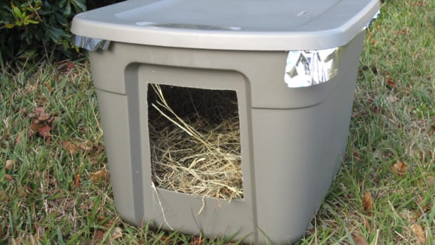 emergency-cold-weather-shelter-for-stray-or-feral-cats