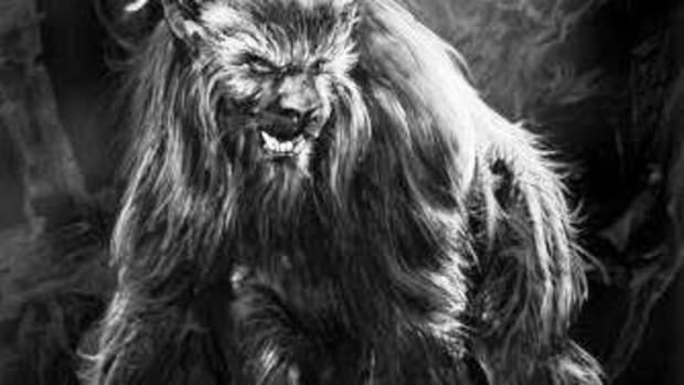 the-ozark-howler-mythical-beast-or-elaborate-hoax