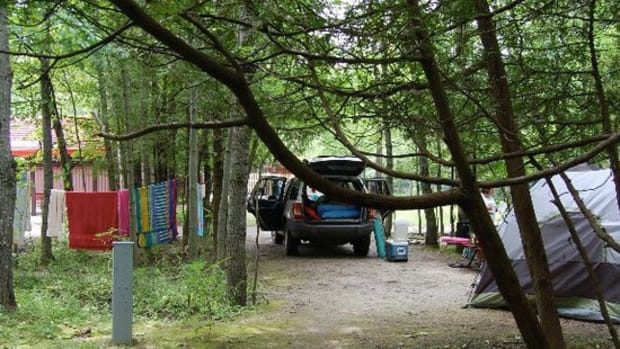 camping-with-your-pooch