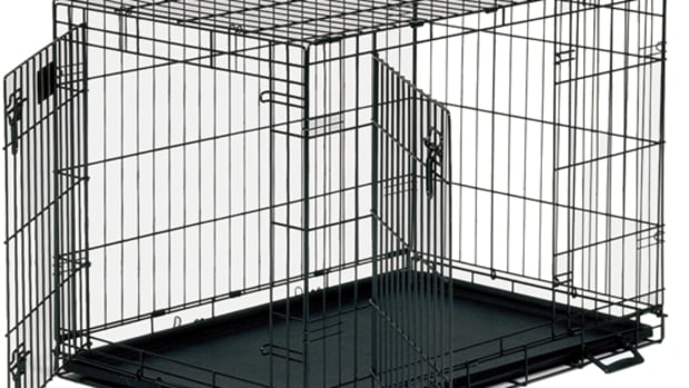 why-every-dog-should-have-a-crate