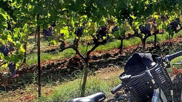 southern-france-biking-the-provence-sountryside
